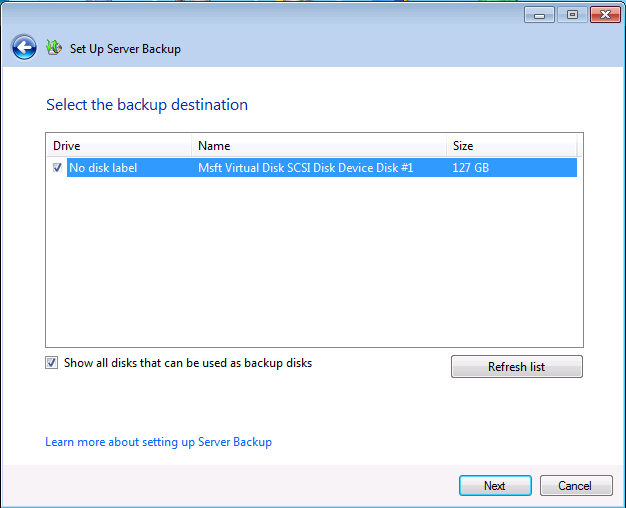 Setup Server Backup - Select Backup Disk