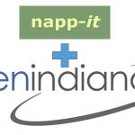 napp-it and OpenIndiana