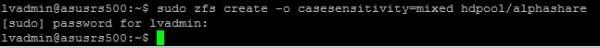 Ubuntu ZFS create mixed filesystem