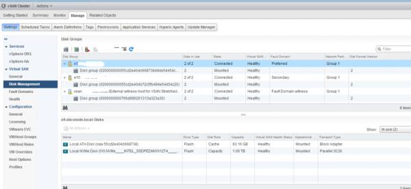 2 node flash vSAN - verify cluster configuration