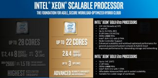 Intel Scalable Processor Family Skylake SP Gold