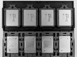 AMD EPYC And Xeon Scalable In Trays