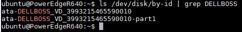 Dell BOSS In Linux