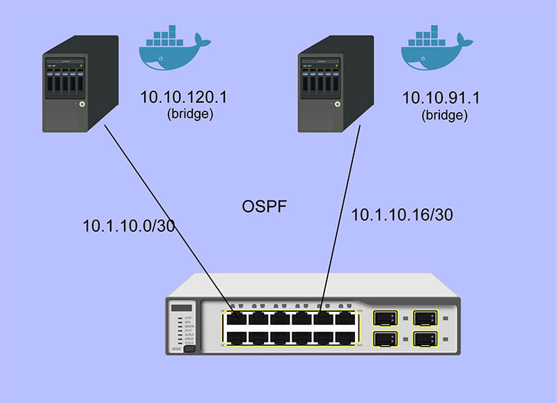 Quanta LB6M Docker Container Network
