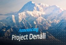 Microsoft Project Denali Cover