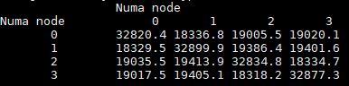 AMD EPYC 7551P Memory Bandwidth NUMA Node Matrix