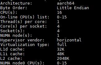 AWS EC2 A1.4xlarge Lscpu