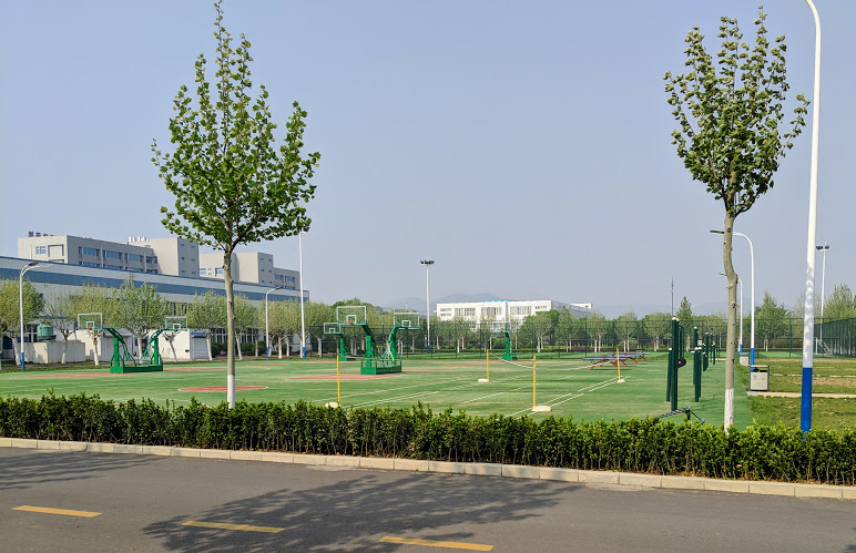 Inspur Grass Basketball Courts