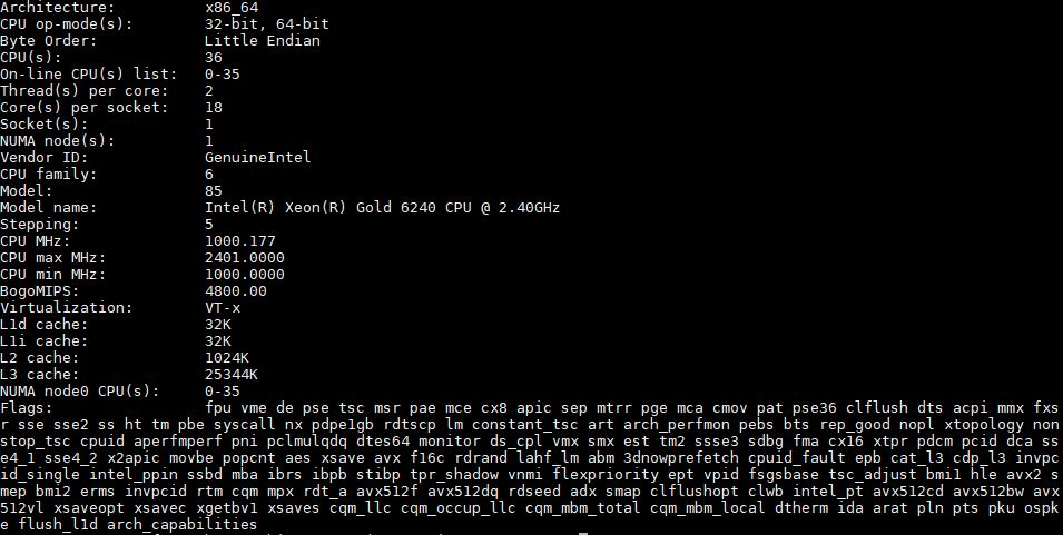 Intel Xeon Gold 6240 Lscpu Output