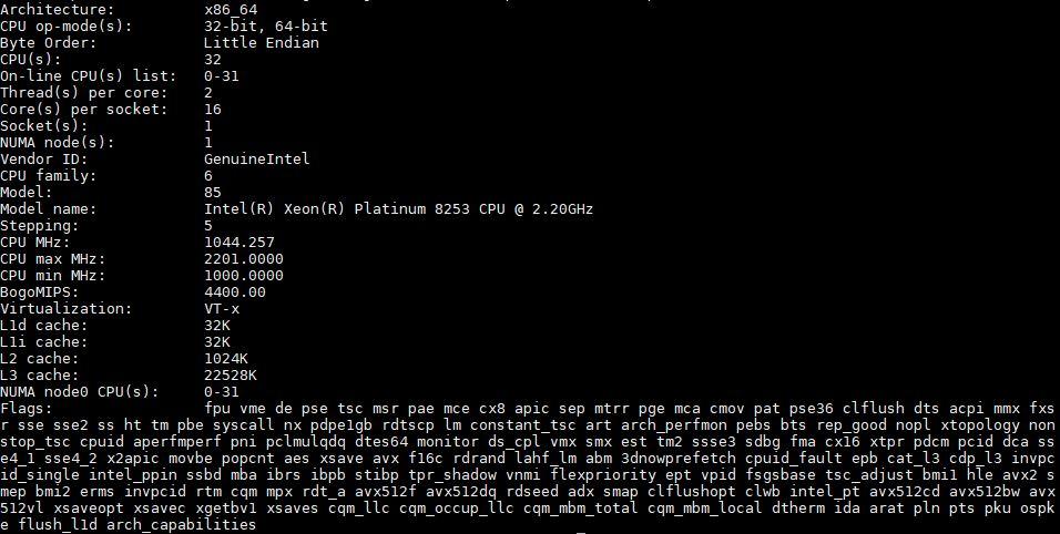 Intel Xeon Platinum 8253 Lscpu Output