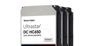 WD Ultrastar DC HC650 20TB