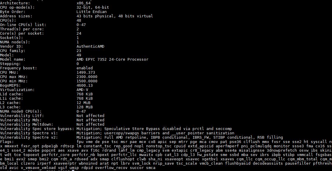 AMD EPYC 7352 Lscpu Output