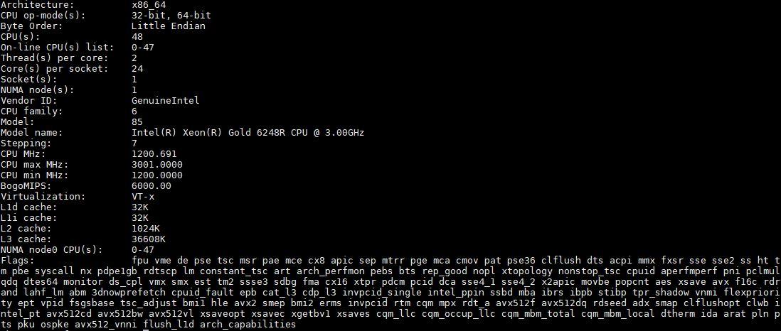 Intel Xeon Gold 6248R Lscpu