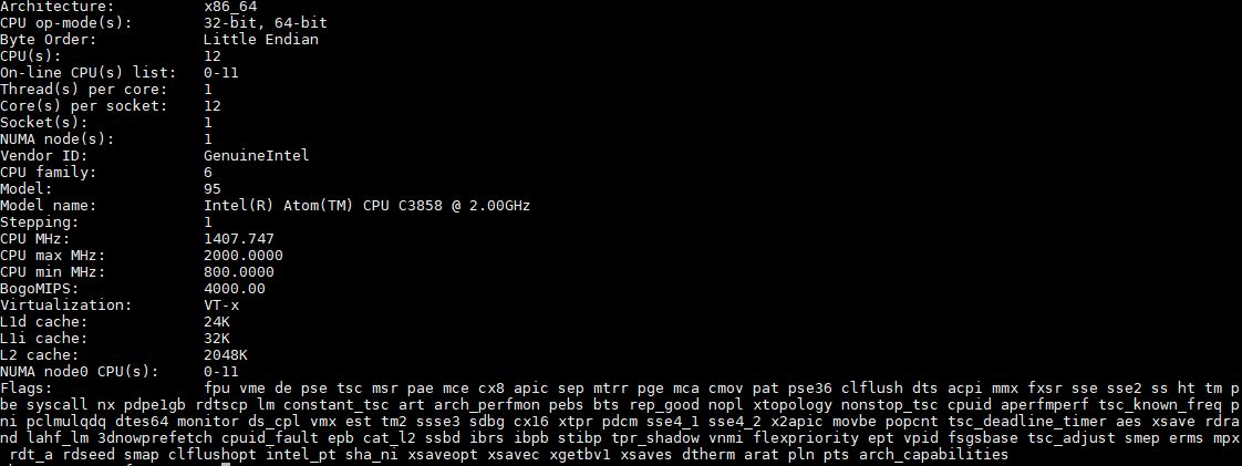 Intel Atom C3858 Lscpu Output