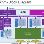 Hot Chips 32 Pensando Capri Block Diagram