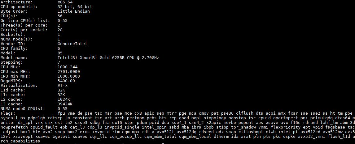 Intel Xeon Gold 6258R Lscpu Output